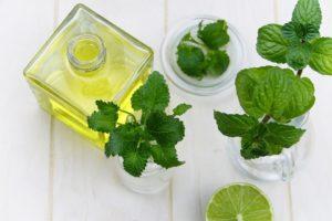 aranyér kezelése gyógynövényekkel